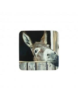 Coaster Donkey