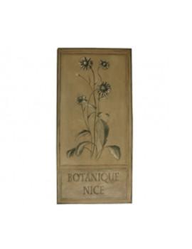 Frame Botanique Nice